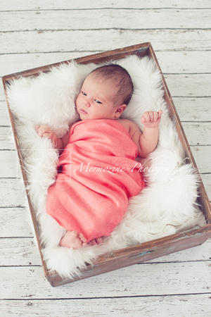 Newborn Photography Session in Rockville, MD